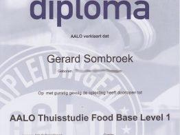 AALO-Food-Base-diploma